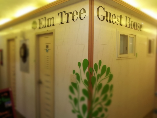 Hotel Elm Tree Guest House Myeongdong