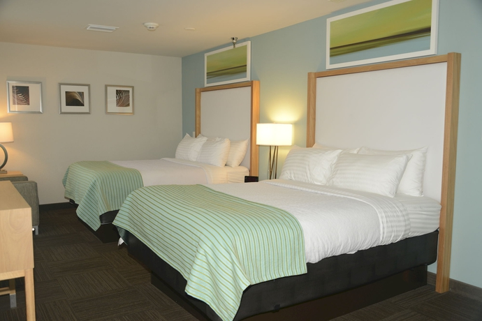 Hotel HOLIDAY INN AND SUITES TAMPA NORTH BUSH GARDENS AR