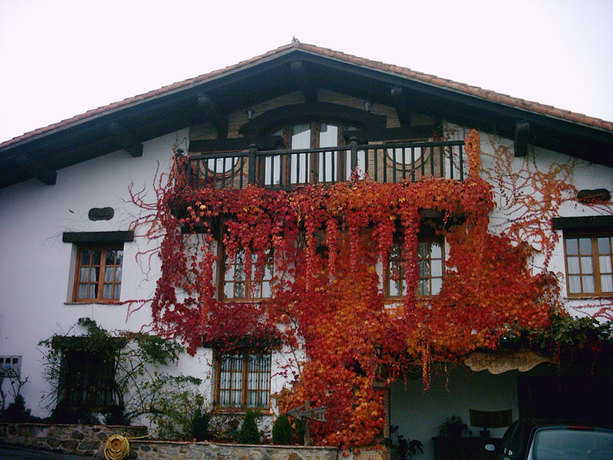 Hotel Haritz-Ondo
