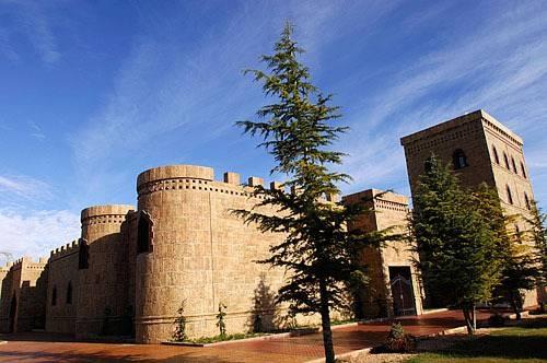 Hotel Hotel Viñedos Y Bodegas El Castillo