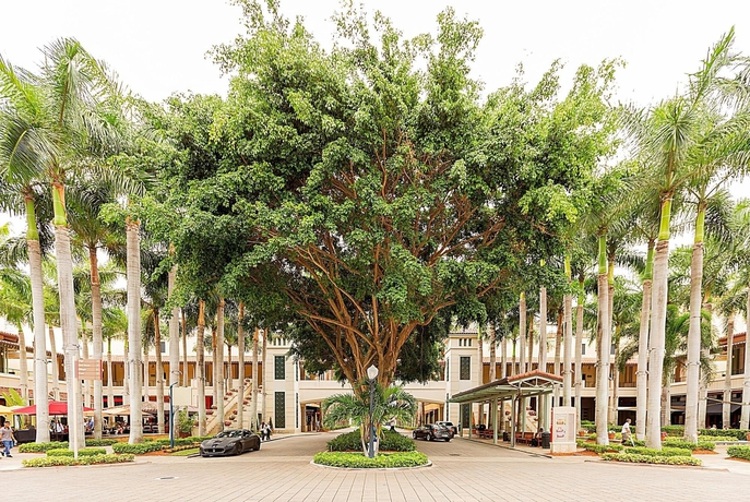 Hotel Pelican Residences in Coral Gables