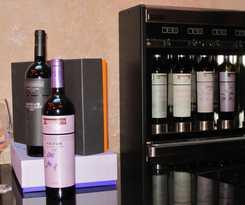 Hotel Nexus Valladolid Suites & Hotel