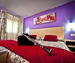Hotel Hotel Condes De Castilla