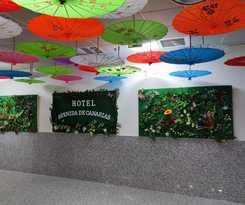 Hotel Avenida de Canarias