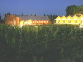 Aguamiel Boutique - hotels in Mendoza