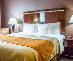 Hotel Comfort Inn and Suites Jfk Airport