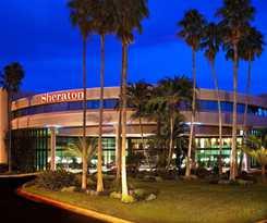 Hotel Sheraton Tampa East