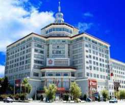 Hotel Tibet International Grand