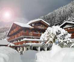 Hotel Hôtel Alpina