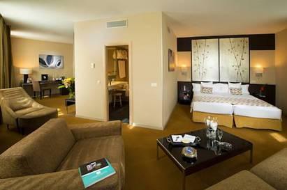 Habitación doble Lujo del hotel Paseo del Arte