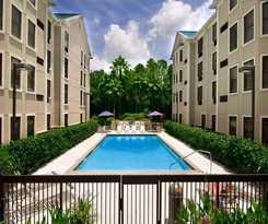 Hotel Hampton Inn & Suites Tampa North